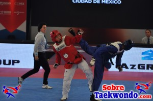 2015 WTF World Cup Taekwondo Team Championships (921)