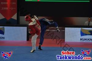 2015 WTF World Cup Taekwondo Team Championships (925)