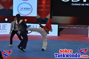 2015 WTF World Cup Taekwondo Team Championships (931)