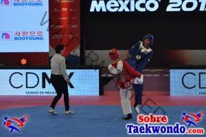 2015 WTF World Cup Taekwondo Team Championships (936)