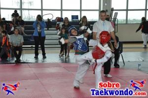 Truescore Taekwondo 165