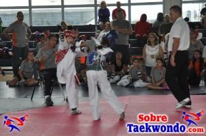 Truescore Taekwondo 166