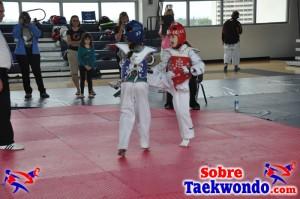 Truescore Taekwondo 168