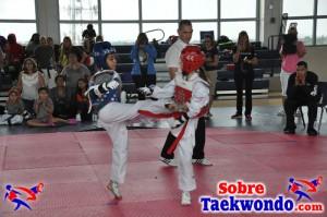 Truescore Taekwondo 169