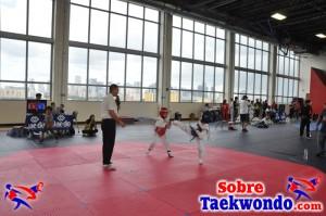 Truescore Taekwondo 175