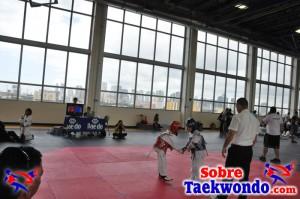 Truescore Taekwondo 181