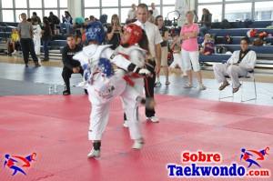 Truescore Taekwondo 186