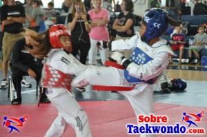 Truescore Taekwondo 190