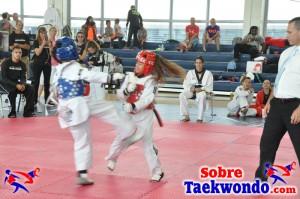 Truescore Taekwondo 191