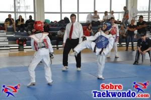 Truescore Taekwondo 192