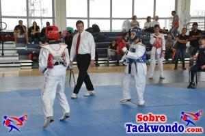 Truescore Taekwondo 193